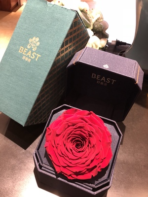 Beast野兽派永生花怎么样?