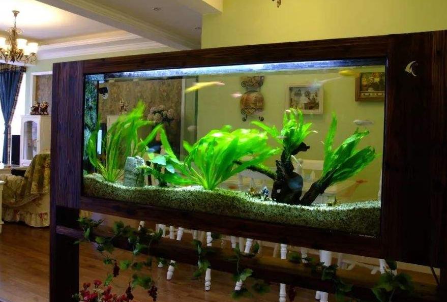 【鱼缸摆放常识】——鱼缸的风水作用和8大摆放禁忌