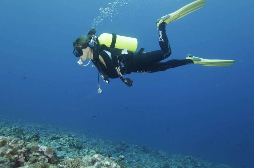 想要拥抱大海 这些潜水装备不可少