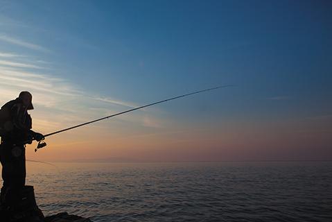 达亿瓦鱼竿测评?达亿瓦鱼竿用着舒服吗?