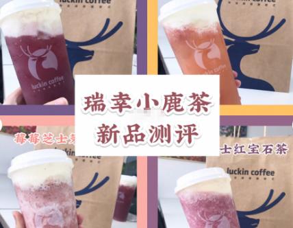瑞幸小鹿茶测评?瑞幸咖啡小鹿茶哪款最好喝?